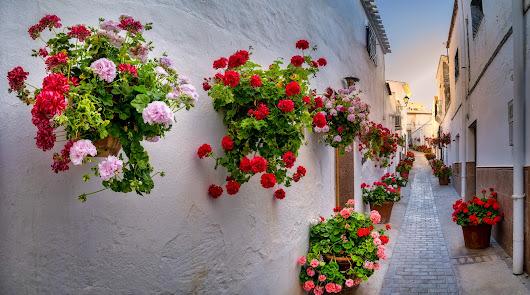 Lucainena de las Torres y su Vía Verde para ver el pueblo 'más bonito'