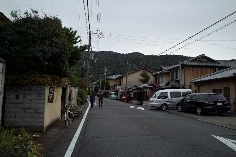 Photo: 永观堂路上