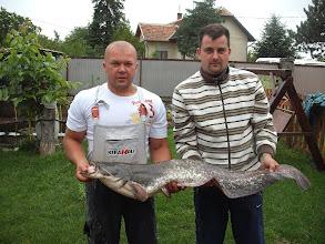 Photo: Oszoli István, 15 kilós harcsa, 2011.07.09.