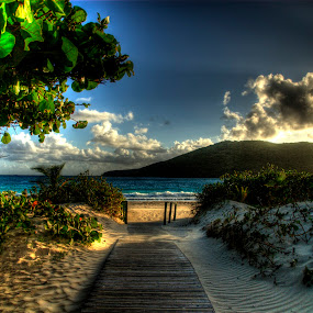 Flamenco Beach by John Krivec - Landscapes Waterscapes ( beach )