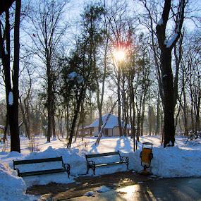 iarna in herastrau by Mihai Nita - City,  Street & Park  City Parks ( park, snow, trees, chalet, landscape, sun,  )