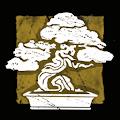 杜松の盆栽