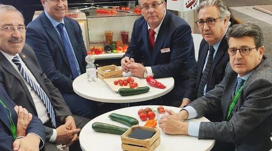 El PP impulsa reuniones en la UE sobre los problemas del campo