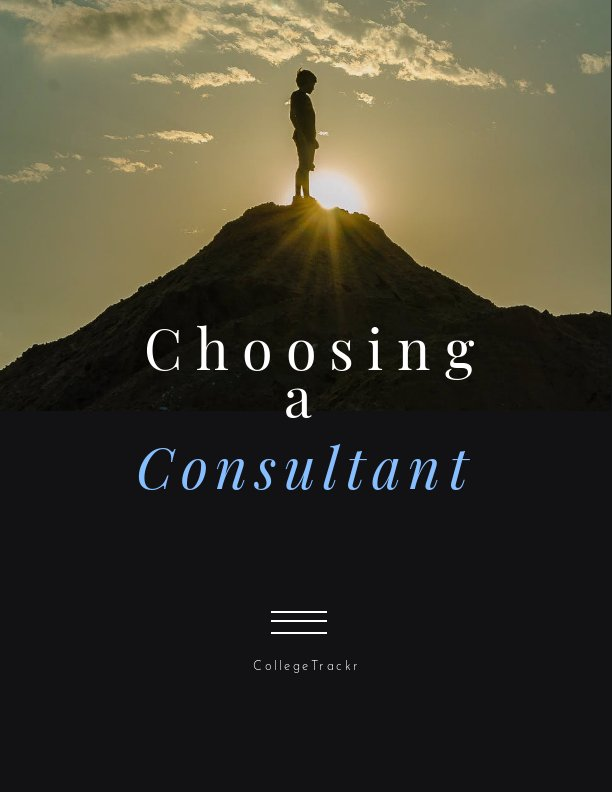 Consultant Project