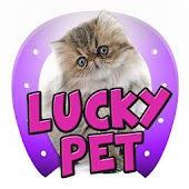 LUCKY PET, Quotes & Sayings