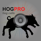 REAL Hog Calls - Hog Hunting