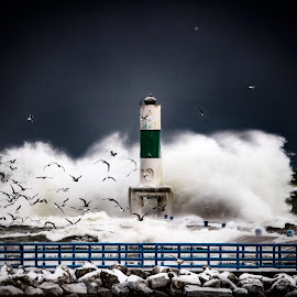 Angry water by Jeffrey Genova - Landscapes Waterscapes ( waves, storm, lighthouse, ocean, birds, water, lake, sea )