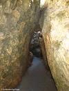 Playing hide and seek in Stokes Bay rocks