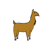 Llama Catch