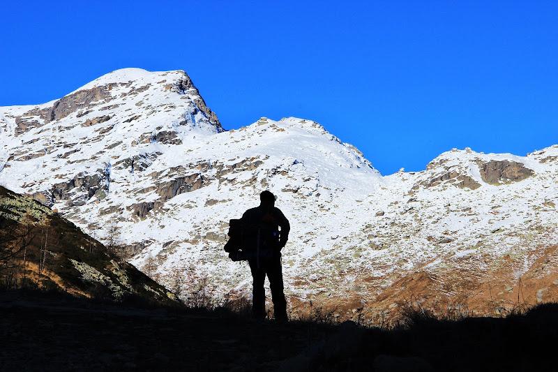 Nel silenzio della montagna di ScrofaniRosaria