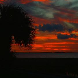 Sunset by Brenda Shoemake - Landscapes Sunsets & Sunrises (  )