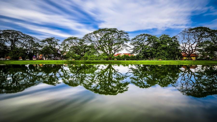 Mirror in the lake by Jon Khoo - City,  Street & Park  City Parks