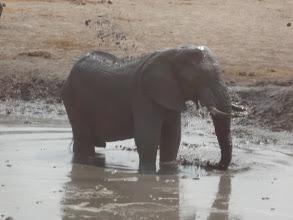 Photo: Splish splash I was taking a bath.