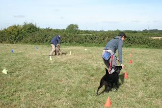 Photo: DogBasics Fun Day 2013 - playing The Crazies. This is Brian Labradoodle and Paul at the leg weaving end of their winning run with Daffy Border Collie and Miriam trying to catch up.