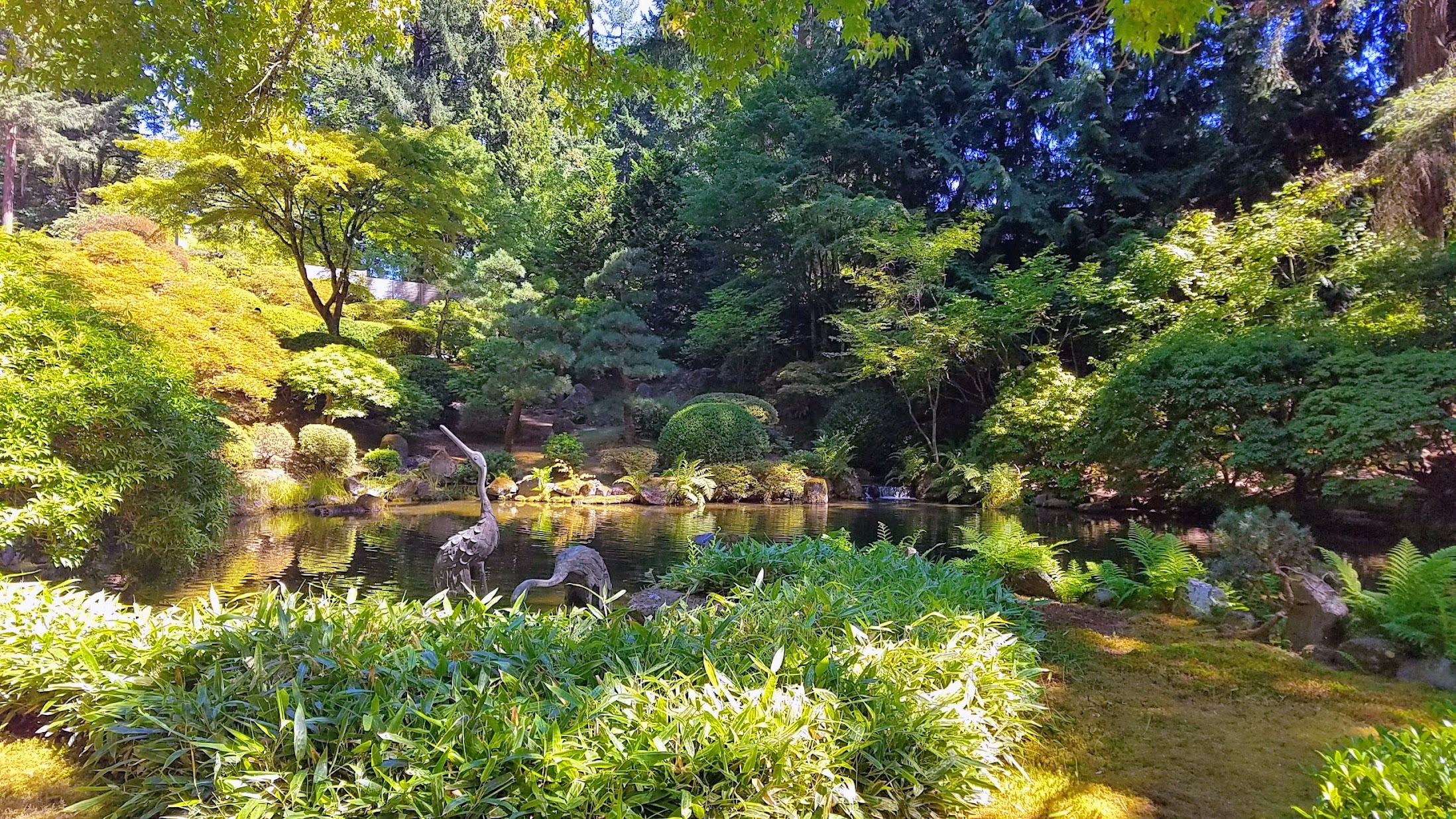 Visiting the Portland Japanese Garden - Strolling Pond Gardens. I cross the Moon Bridge from above by the Upper Pond with its crane sculptures which sometimes also are visited by real cranes.