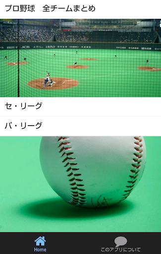2016 プロ野球 全チームまとめ