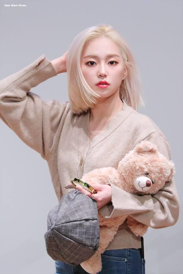 blondi 1