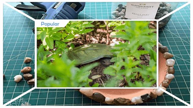 Download easy diy garden toad house by rafaela studio apk latest easy diy garden toad house by rafaela studio poster publicscrutiny Gallery