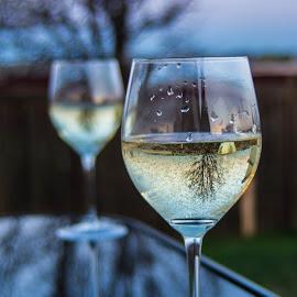 Reflections by Steve Wieseler - Food & Drink Alcohol & Drinks ( wine glass )