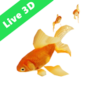 Gold Fish Real Live Wallpaper
