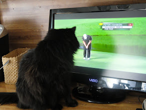 Photo: One of the Masters leaders lines up a short putt.   Amber is still very interested.