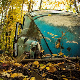 by Sarah Poirier - Novices Only Objects & Still Life ( forest, car, abandoned )