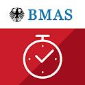 """BMAS-App """"einfach erfasst"""" icon"""