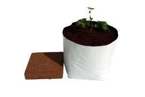 coco_square_bag