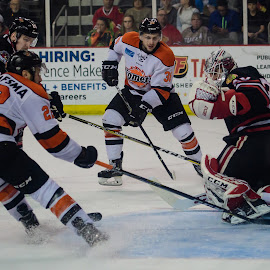 Komets vs Fuel by Dennis McClintock - Sports & Fitness Ice hockey ( sports, skaters, ice hockey, ice skaters )