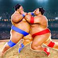 Sumo Wrestling Fight Arena
