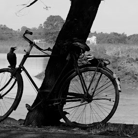 IT'S MINE  by Abinash Patra - City,  Street & Park  Street Scenes ( cycle, street )