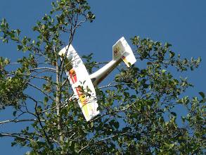 Photo: MiniMag MPX ... dans l'arbre !