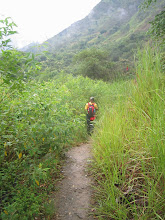 Photo: Hiking in the jungle.