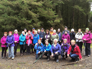 Photo: Denny O'Dwyer's C walk in Combaun Wood on Sunday January 4th, 2015.  3 of 4