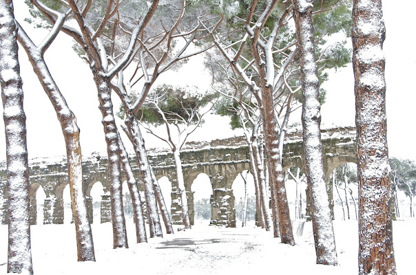 Nevicata storica! di anto70