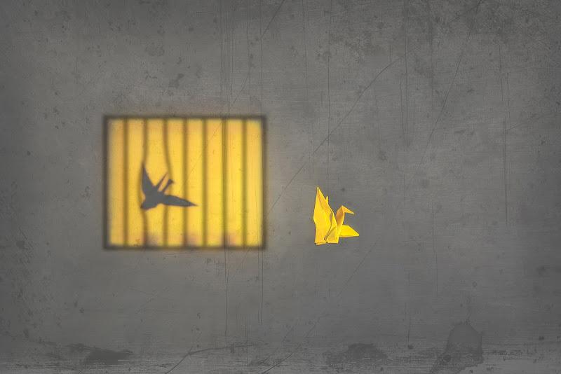 Le ali della libertà di Alexx70