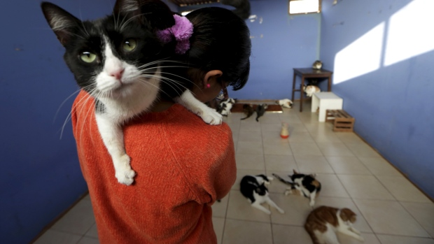 Nestle says forced labour has 'no place' in its supply chain, after a U.S. lawsuit alleges various labour violations at one of its suppliers for Fancy Feast cat food.