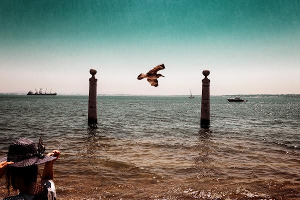 The flight di Sebastiano Pieri