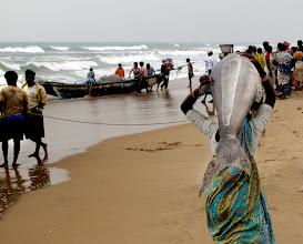 Photo: Fresh Fish  Puri Orissa