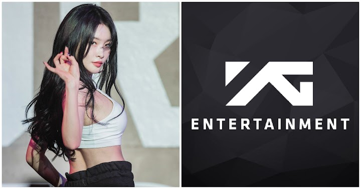 9 celebrități respinse de YG Entertainment