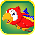 Learn Birds Name - Birds Picture & Sound APK