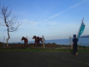 Photo: 28頭しかいない対州馬かな?