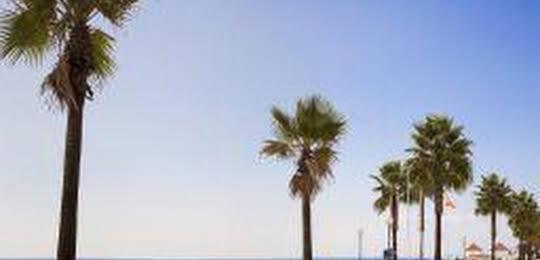 Hotel Blue Sea Lepemar Playa