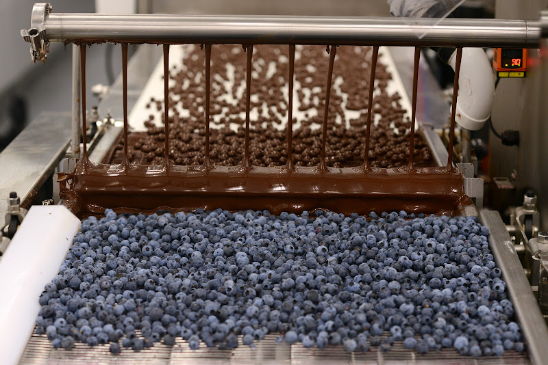 ....Bleuets enrobés de chocolat noir..Blueberries covered in dark chocolate....