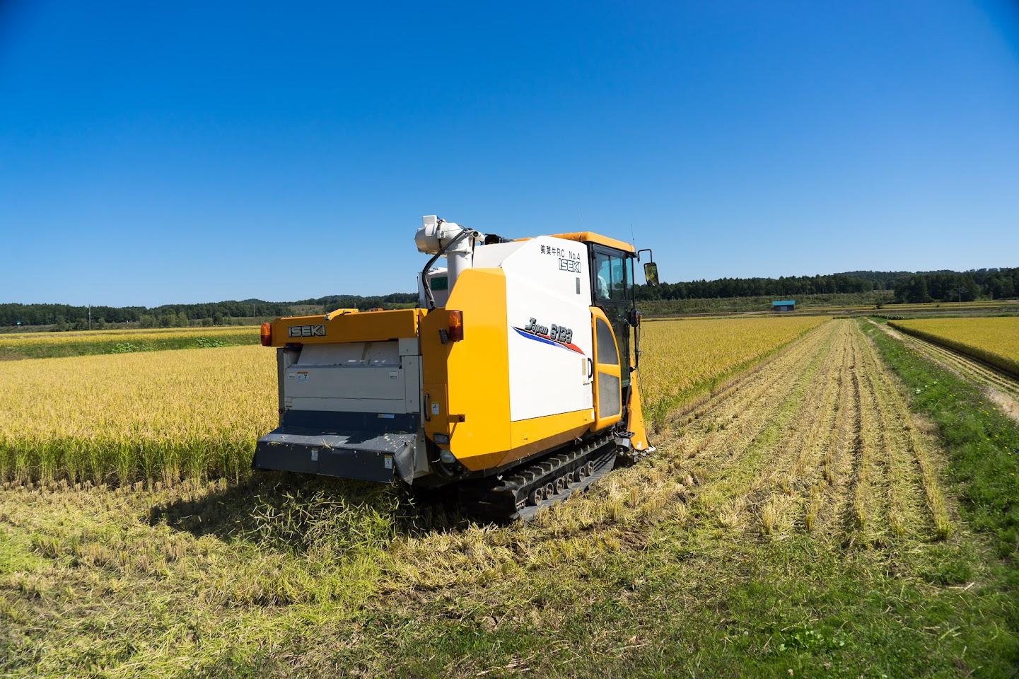 慎重かつ豪快に稲を収穫