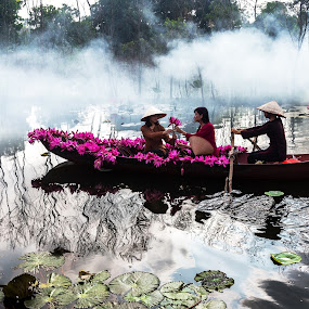 Suong khoi 1 by Nguyen Thanh Cong - People Street & Candids ( congphotography, thanhcong7855@gmail.com, congdolce@gmail.com, nguyen thanh cong, waterscape, woman, vietnamese, vietnam, landscape, natural )