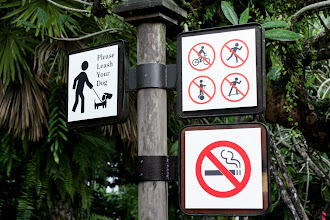 Photo: Year 2 Day 133 - I Think You Are Allowed to Run and Walk in the Park Though