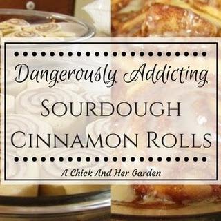 Dangerously Addicting Sourdough Cinnamon Rolls.