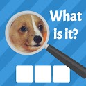 Zoom Quiz: Close Up Pics Game, Guess the Word icon