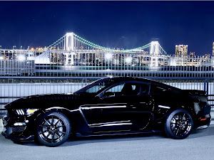 シェルビー GT350 のカスタム事例画像 Black Cobraさんの2020年02月03日06:27の投稿